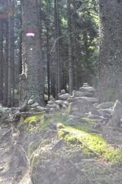 Der Weg zur Ifingerhütte