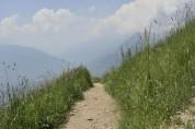 Taser Höhenweg